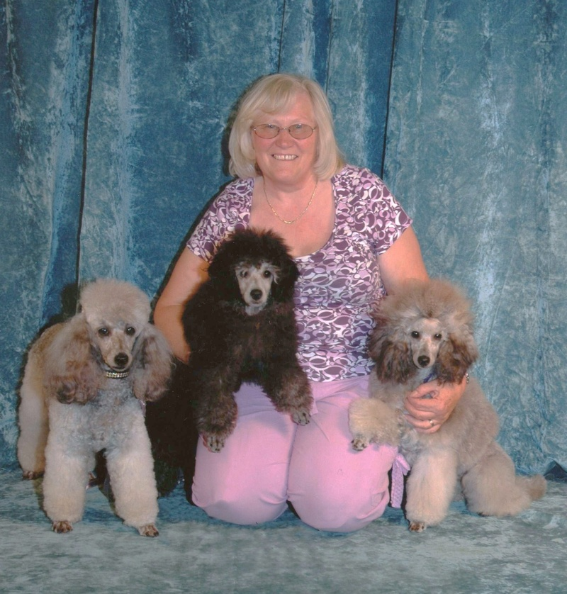 Dog Grooming In Mayville